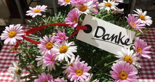 """Rosafarbene Chrysanthemen in dem eine Karte steckt mit dem Wort """"Danke"""""""
