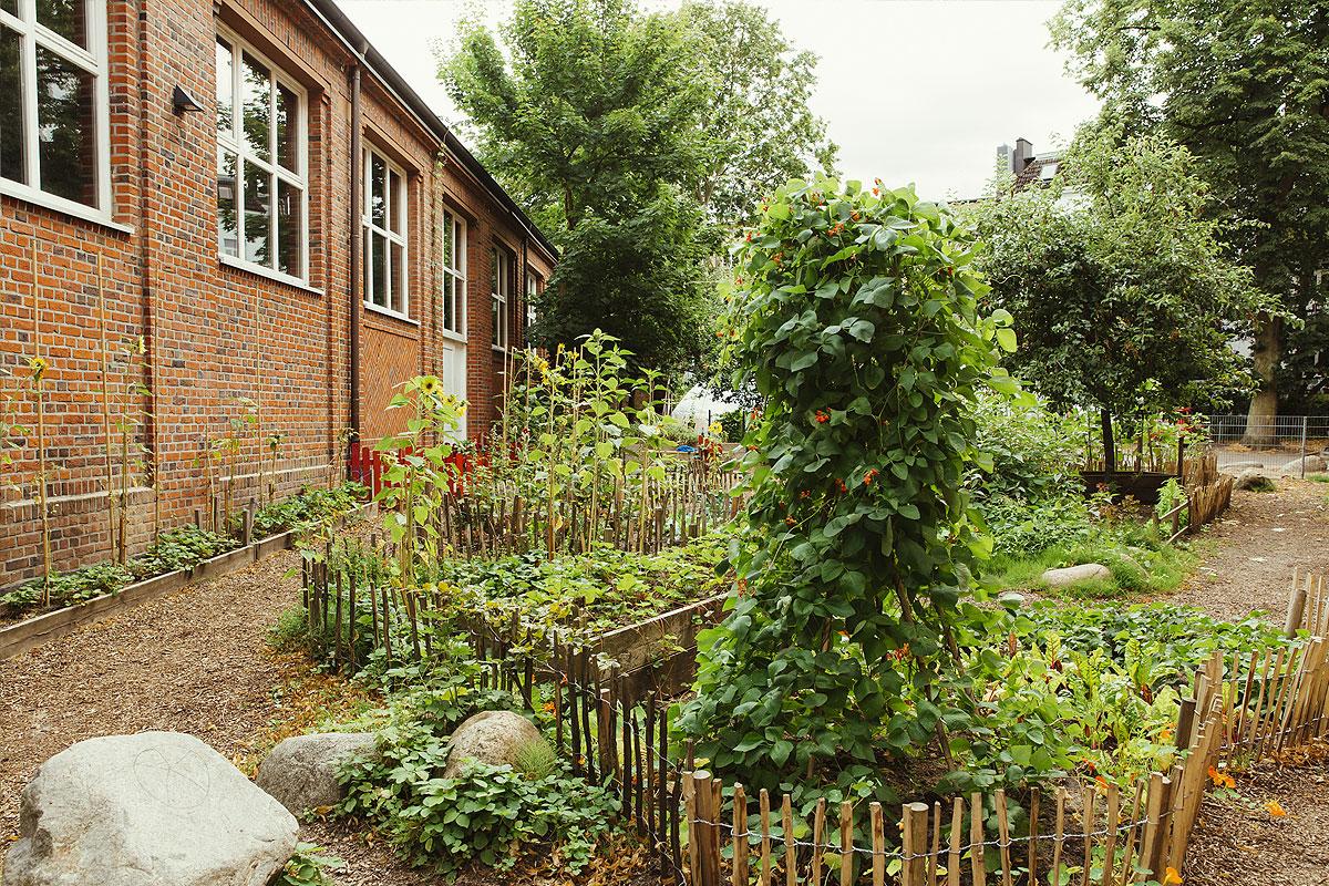 Der Schulgarten beherbergt viele verschiedene Pflanzen und zwischen den Beeten führen verschlungene Wege und die Beete wurden mit kleinen selbst gebauten Holzzäunen umsäumt.